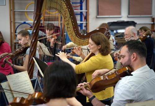 www crowthorneorchestra com/images/stringworkshop2